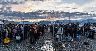 Migranti aspettano di salire su un treno a Gevgelija, al confine tra la Grecia e la Macedonia. (Armend Nimani, Afp)