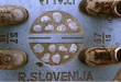 Confine_Italia_Slovenia_Arrivi Via Terra